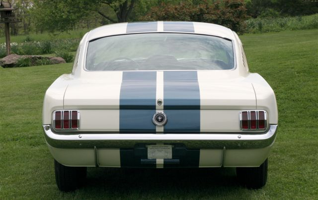 '65 Shelby GT350, rear view